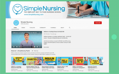Simple Nursing Success Story: Apply animation as the key for business advancing